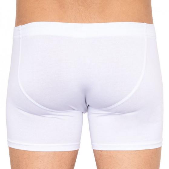 Pánské boxerky Styx long klasická guma bílé (F1061)