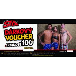 Elektronický voucher Styx 100,- (zaslání pouze e-mailem)